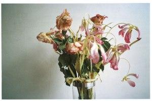 dead-flowers-1